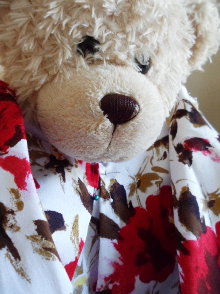 Ted helps me on my Sew weekly challenge and my inspirations for Spanish Harlem !