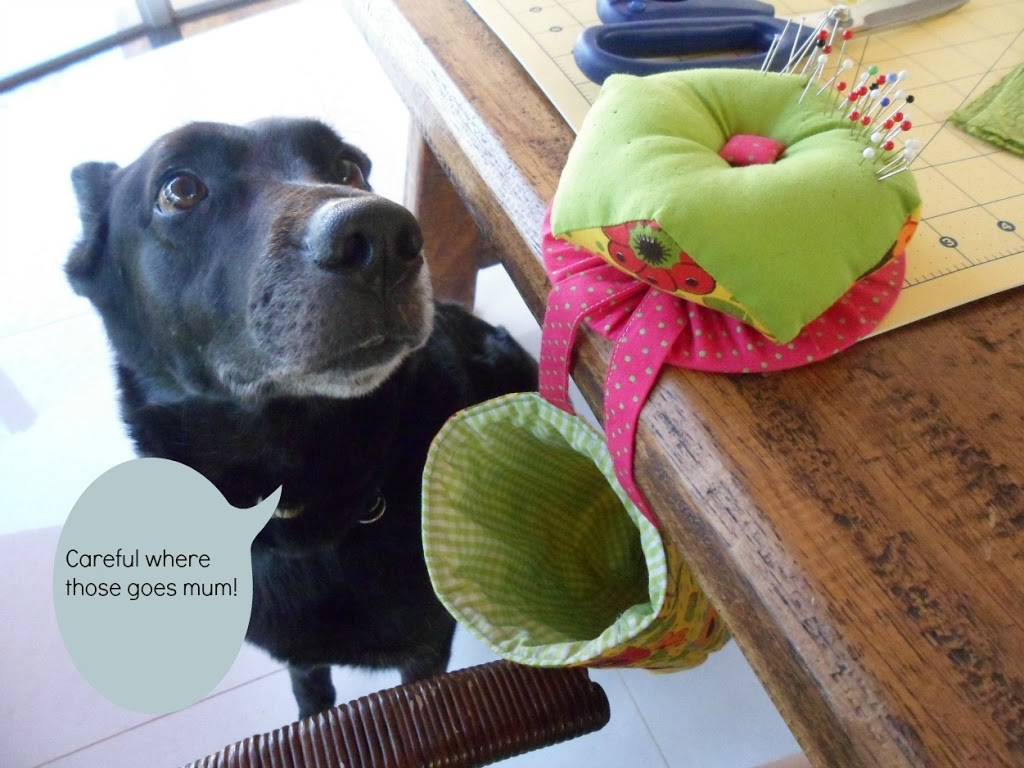 Sewing with Pets!